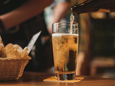 Wat je altijd al hebt willen weten over bier in Europa